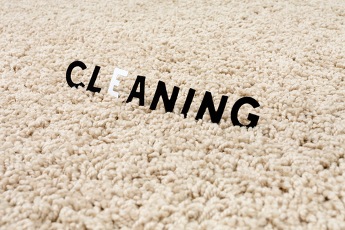 Carpet Cleaning For Pets