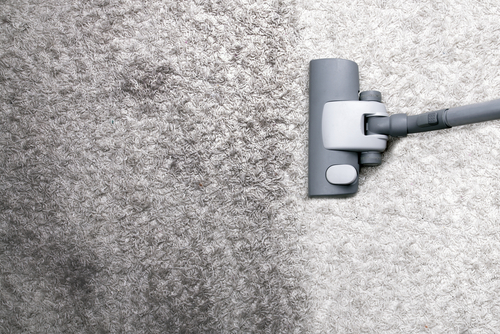 Best Carpet Cleaning Companies Ideas