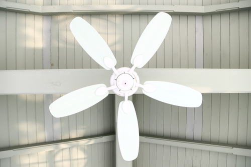 7 tips on choosing ceiling fan with lights aloadofball Choice Image