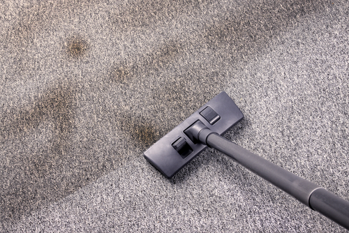 Ditry Carpet Health Issues