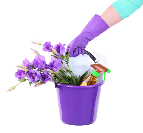 Spring Cleaning Company